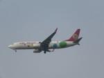 ねこすけさんが、天津浜海国際空港で撮影した9エア 737-86Xの航空フォト(写真)
