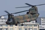 eikas11さんが、八尾空港で撮影した陸上自衛隊 CH-47Jの航空フォト(写真)