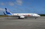 ワーゲンバスさんが、宮古空港で撮影した全日空 737-881の航空フォト(写真)