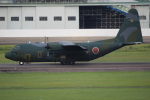 キイロイトリ1005fさんが、名古屋飛行場で撮影した航空自衛隊 C-130H Herculesの航空フォト(写真)