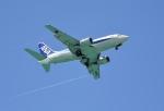 ワーゲンバスさんが、宮古空港で撮影したANAウイングス 737-5L9の航空フォト(写真)