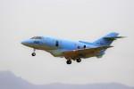 hidetsuguさんが、札幌飛行場で撮影した航空自衛隊 U-125A(Hawker 800)の航空フォト(写真)