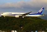 あしゅーさんが、福岡空港で撮影した全日空 777-281の航空フォト(写真)