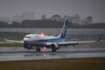tecasoさんが、伊丹空港で撮影した全日空 737-881の航空フォト(写真)