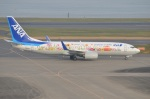 amagoさんが、羽田空港で撮影した全日空 737-881の航空フォト(写真)