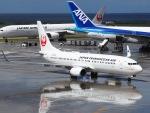 51ANさんが、那覇空港で撮影した日本トランスオーシャン航空 737-8Q3の航空フォト(写真)