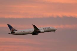 GNPさんが、成田国際空港で撮影したユナイテッド航空 787-9の航空フォト(写真)