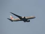 STAR TEAMさんが、中部国際空港で撮影した日本航空 787-8 Dreamlinerの航空フォト(写真)