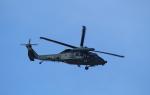 STAR TEAMさんが、名古屋飛行場で撮影した航空自衛隊 UH-60Jの航空フォト(写真)