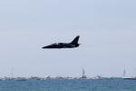 チャッピー・シミズさんが、ロングビーチ空港で撮影したThe Raising Cane L-39 Albatrosの航空フォト(写真)