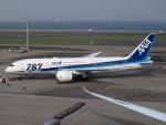 51ANさんが、羽田空港で撮影した全日空 787-8 Dreamlinerの航空フォト(写真)
