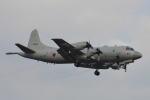 350JMさんが、厚木飛行場で撮影した海上自衛隊 P-3Cの航空フォト(写真)