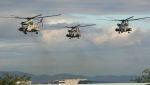 C.Hiranoさんが、伊丹空港で撮影したアメリカ海兵隊 CH-53Dの航空フォト(写真)