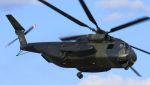 C.Hiranoさんが、ル・リュク=ル・カネ陸軍基地で撮影したドイツ陸軍 CH-53E/53K/MH-53Eの航空フォト(写真)