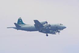 厚木基地で撮影された厚木基地の航空機写真
