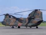 まさ75さんが、木更津飛行場で撮影した陸上自衛隊 CH-47Jの航空フォト(写真)
