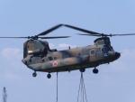まさ75さんが、木更津飛行場で撮影した陸上自衛隊 CH-47JAの航空フォト(写真)
