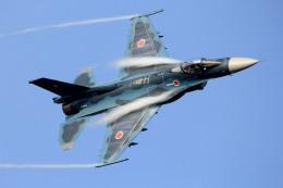 さかなやさんが、茨城空港で撮影した航空自衛隊 F-2Aの航空フォト(写真)