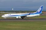 Echo-Kiloさんが、新千歳空港で撮影した全日空 737-881の航空フォト(写真)
