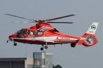 (`・ω・´)さんが、調布飛行場で撮影した千葉市消防航空隊 AS365N3 Dauphin 2の航空フォト(写真)