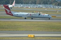 amagoさんが、シドニー国際空港で撮影したカンタスリンク DHC-8-402Q Dash 8の航空フォト(写真)