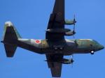 STAR TEAMさんが、名古屋飛行場で撮影した航空自衛隊 C-130H Herculesの航空フォト(写真)