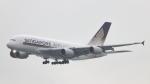 誘喜さんが、香港国際空港で撮影したシンガポール航空 A380-841の航空フォト(写真)