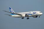 ceskykrumlovさんが、羽田空港で撮影した全日空 787-8 Dreamlinerの航空フォト(写真)