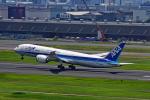 SHINYA787さんが、羽田空港で撮影した全日空 787-9の航空フォト(写真)