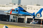 NCT310さんが、東京ヘリポートで撮影した福岡県警察 AS365N3 Dauphin 2の航空フォト(写真)