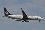 fortnumさんが、新千歳空港で撮影した全日空 737-881の航空フォト(写真)