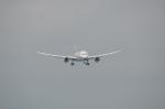 たつぼんさんが、松山空港で撮影した全日空 787-8 Dreamlinerの航空フォト(写真)
