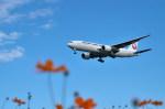 トシさんさんが、成田国際空港で撮影した日本航空 777-246/ERの航空フォト(写真)