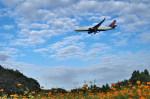 トシさんさんが、成田国際空港で撮影したデルタ航空 767-332/ERの航空フォト(写真)