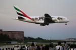 トールさんが、成田国際空港で撮影したエミレーツ航空 A380-861の航空フォト(写真)