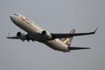 Koenig117さんが、関西国際空港で撮影した山東航空 737-85Nの航空フォト(写真)