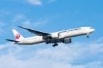 ぱん_くまさんが、羽田空港で撮影した日本航空 777-346/ERの航空フォト(写真)