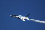 おにぎり大臣さんが、入間飛行場で撮影した航空自衛隊 T-4の航空フォト(写真)