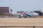 ポン太さんが、成田国際空港で撮影したマレーシア航空 A330-323Xの航空フォト(写真)
