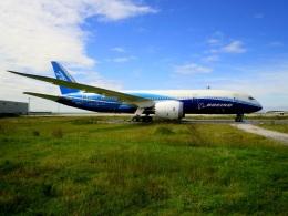ころちゃんさんが、中部国際空港で撮影したボーイング 787-8 Dreamlinerの航空フォト(飛行機 写真・画像)