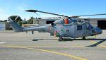 C.Hiranoさんが、ル・リュク=ル・カネ陸軍基地で撮影したフランス海軍 WG-13 Lynx HAS.4(FN)の航空フォト(写真)