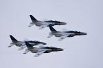 ひこ☆さんが、浜松基地で撮影した航空自衛隊 T-4の航空フォト(写真)