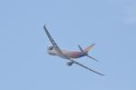 hareotokoさんが、羽田空港で撮影したアシアナ航空 A330-323Xの航空フォト(写真)