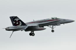 DBACKさんが、岩国空港で撮影したアメリカ海兵隊 F/A-18C Hornetの航空フォト(飛行機 写真・画像)