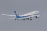 yuu-kiさんが、羽田空港で撮影した全日空 787-8 Dreamlinerの航空フォト(写真)
