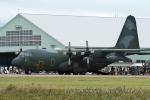 kanadeさんが、小松空港で撮影した航空自衛隊 C-130H Herculesの航空フォト(写真)