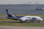 小牛田薫さんが、羽田空港で撮影した全日空 787-8 Dreamlinerの航空フォト(写真)