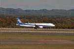 トラフィックナビゲーター・ヨッシーさんが、新千歳空港で撮影した全日空 A321-211の航空フォト(写真)