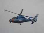 おぶりがーどさんが、松本空港で撮影した長野県警察 AS365N3 Dauphin 2の航空フォト(写真)
