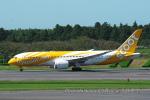 kanadeさんが、成田国際空港で撮影したスクート・タイガーエア 787-8 Dreamlinerの航空フォト(写真)